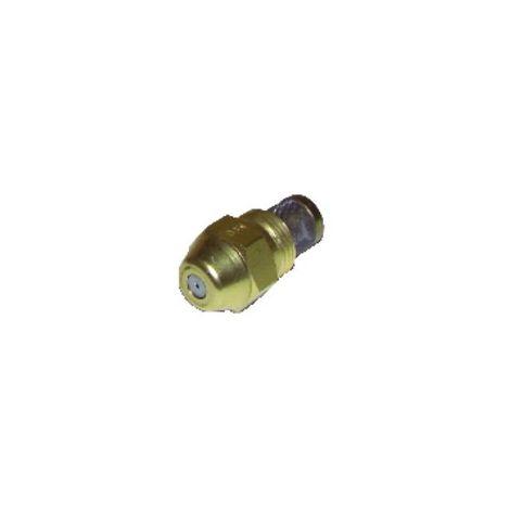 Nozzle danfoss 0.45g 45° s - DANFOSS : 030F4906
