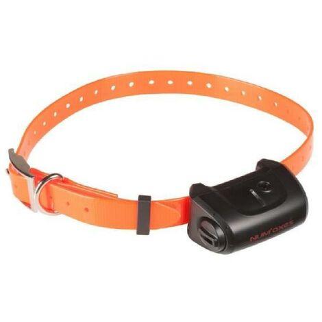 NUMAXES Collier supplémentaire CANICOM 5 - Sangle orange Num'axes