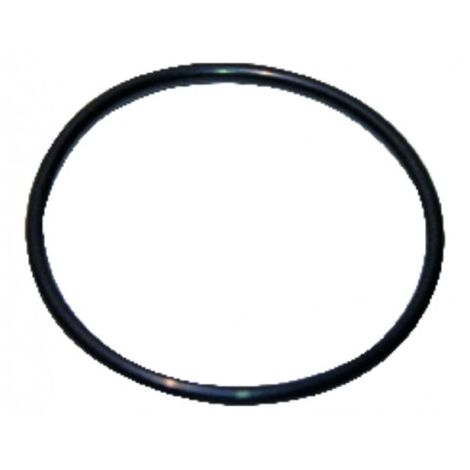 O-ring 120.02x6.99-n - GEMINOX : 87185725380