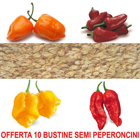 """main image of """"OFFERTA 10 BUSTINE SEMI DI PEPERONCINI BLUMEN A SCELTA HABANERO NAGA MORICH PICCANTE CALABRESE"""""""