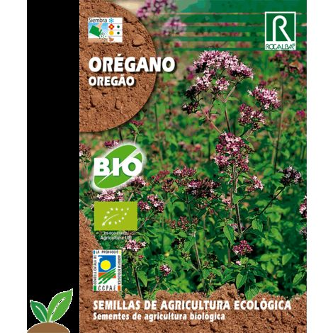 OREGANO ECO - SEMILLAS