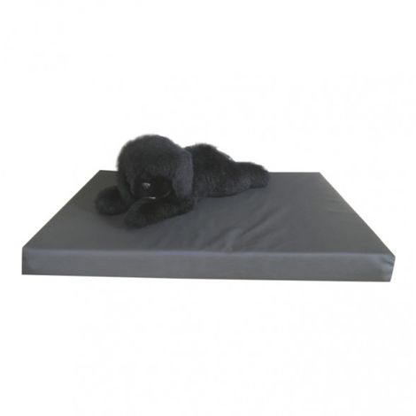 orthopedic bed pillow dog