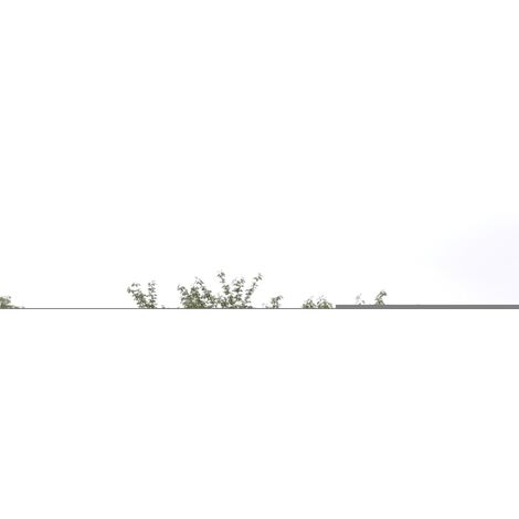 Outdoor Greenhouse Large Portable Gardening Plant Hot House - Transparent