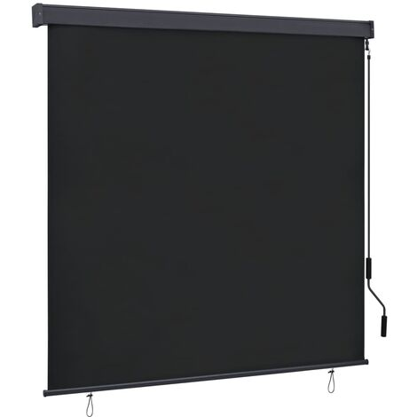 Outdoor Roller Blind 160x250 cm Anthracite
