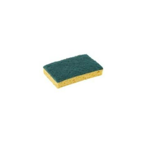Pack 10 tamponge green double face large model