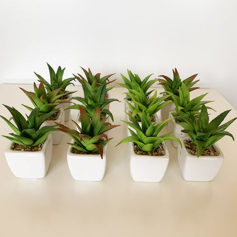 Pack 12 cactus cereus surtidos artificiales con maceta de ceramica