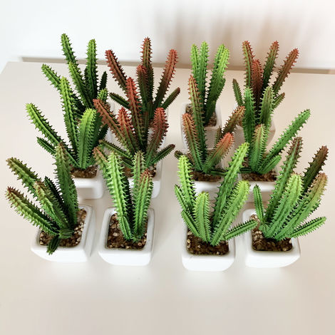 Pack 12 cactus kañanchoe surtidos artificiales con maceta de ceramica