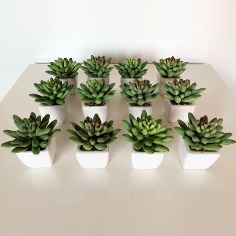 Pack 12 cactus marianae surtidos artificiales con maceta de ceramica