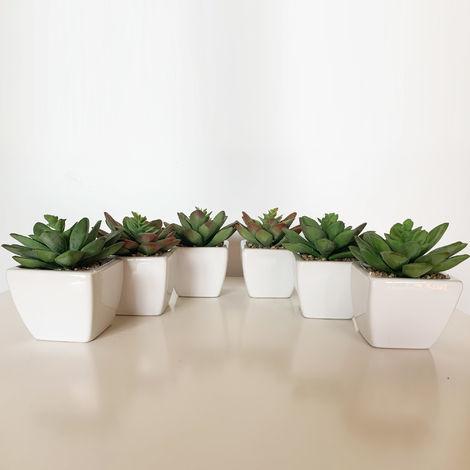 Pack 6 cactus crepusculo surtidos artificiales con maceta de ceramica