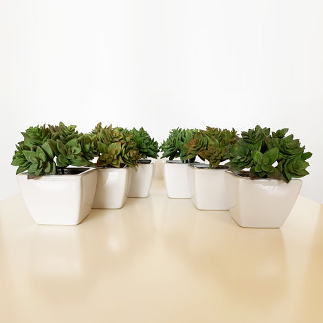 Pack 6 cactus echeveria surtidos artificiales con maceta de ceramica