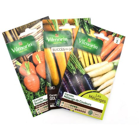 Pack de 3 sachets de graines de carottes originales et multicolores