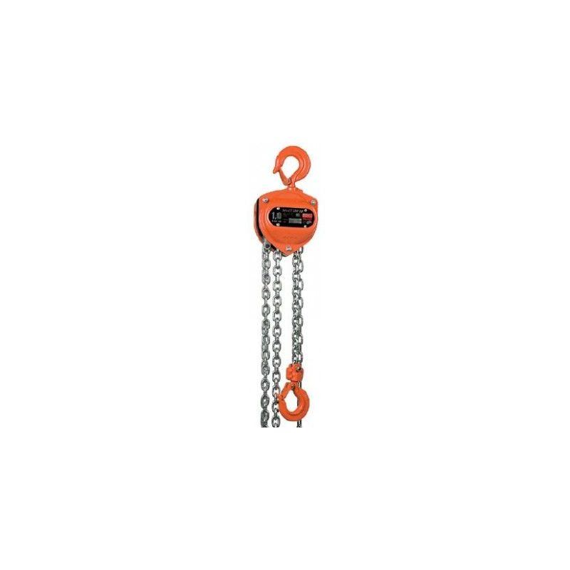 Websilor - Palan à chaine utilisation intensive - Hauteur de levée : 9 mètres - Capacité : 1500 kg