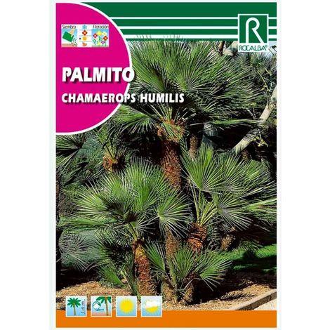 PALMITO - SOBRE DE SEMILLAS 5 aprox.
