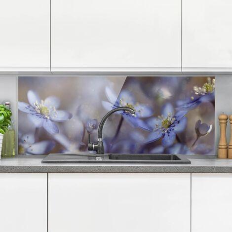 Panel antisalpicaduras de cristal - Anémonas en Azul - Panorámico Dimensión LxA: 40cm x 100cm
