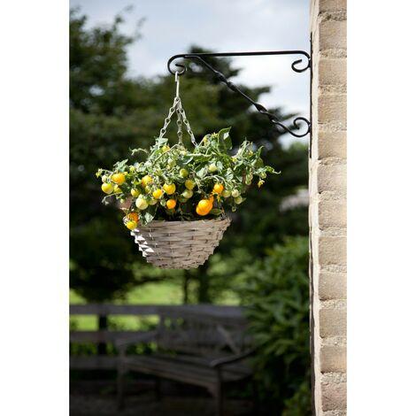 Panier suspendu avec plants de tomates inclus - Astuceo