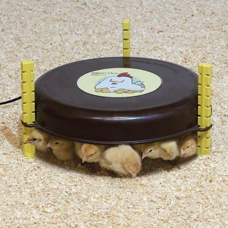 Panneau chauffant circulaire pour poussins