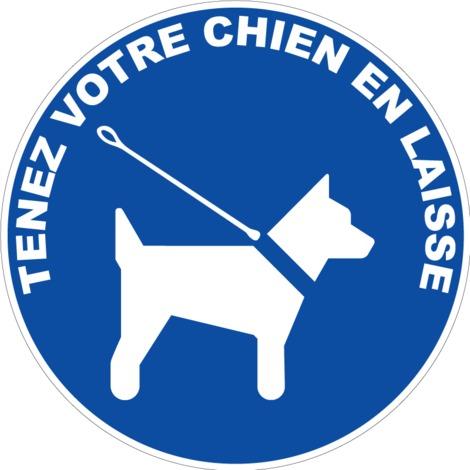 """main image of """"Panneau Obligation de tenir son chien en laisse - Novap"""""""
