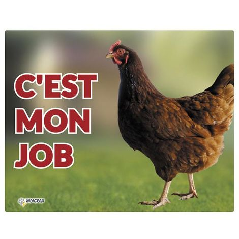 Panneau photo poule FR