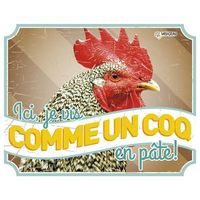 Panneau photo poule vintage1 FR