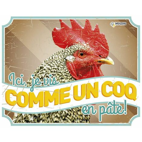 Panneau photo S poule vintage1 fr