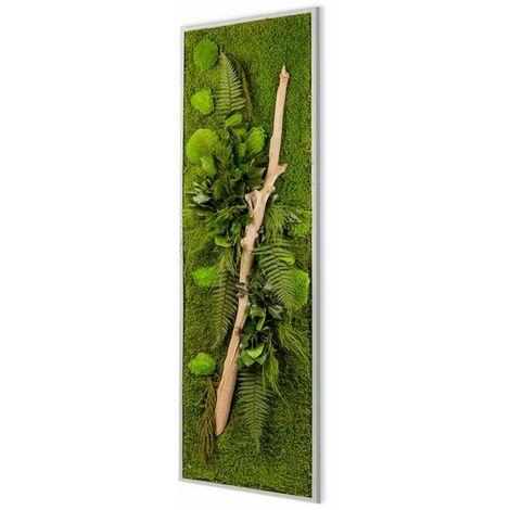 """main image of """"Panneau végétal nature avec plantes stabilisées - Blanc (cadre)"""""""