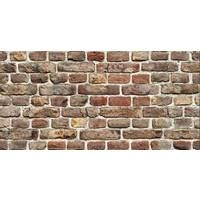 PANNELLO DECORATIVO CM 50X100 DIS. BRICK
