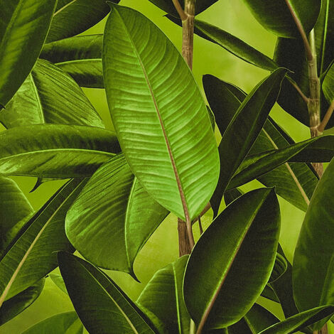 Papier peint 362011 A.S. Création Neue Bude 2.0 | Papier peint Vert Marron en ligne