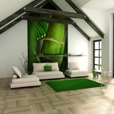 Papier peint - bambou - détail .Taille : 200x154