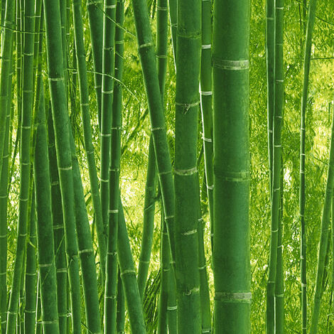 Papier peint bambou | Papier peint motif vert plante | Papier peint Lutèce pour chambre adulte & salon938718 - 10,05 x 0,53 m