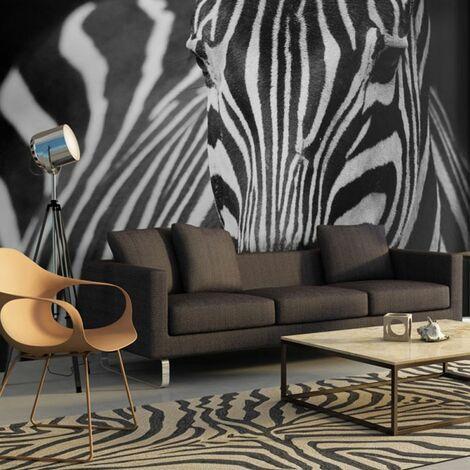 Papier peint - Blanc à rayures noires .Taille : 250x193