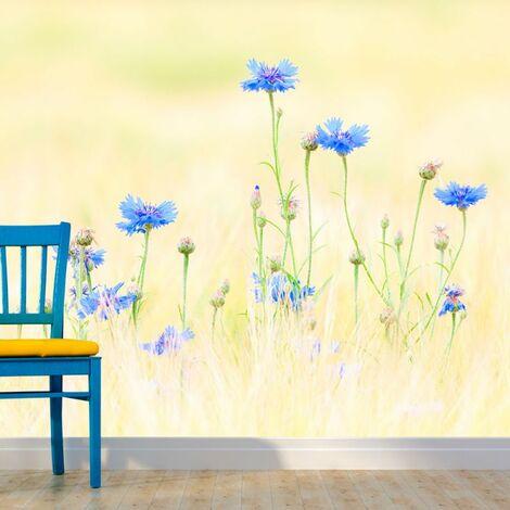 Papier peint - Bleuets .Taille : 300x231