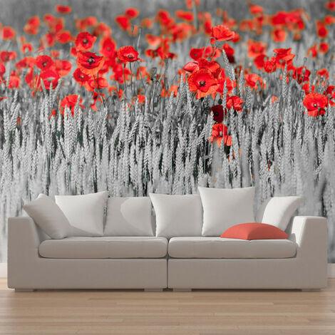 Papier peint - Coquelicots rouge sur champ noir et blanc 450x270