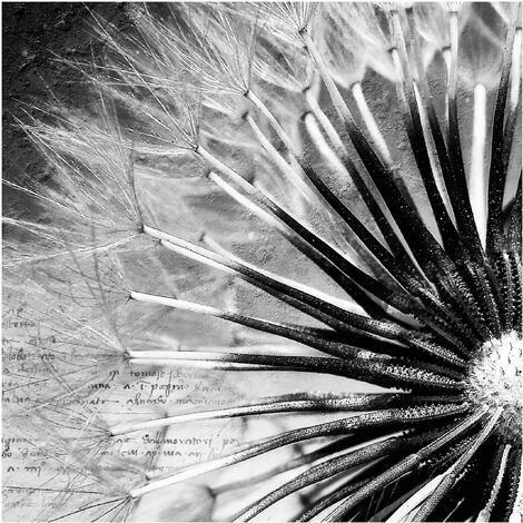 Papier peint intissé - Dandelion Black & White - Mural Carré