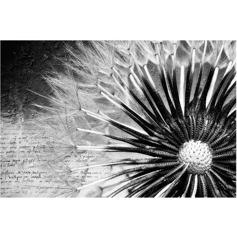 Papier peint intissé Pissenlit noir et blanc - Peinture murale Grand - Dimension HxL: 290cm x 432cm