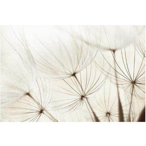 Papier peint intissé Premium - Gentle grasses - Mural Large