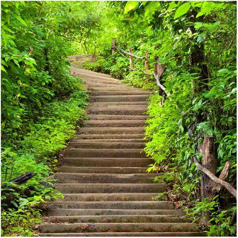 Papier peint intissé - Stair climb in the Forest - Mural Carré