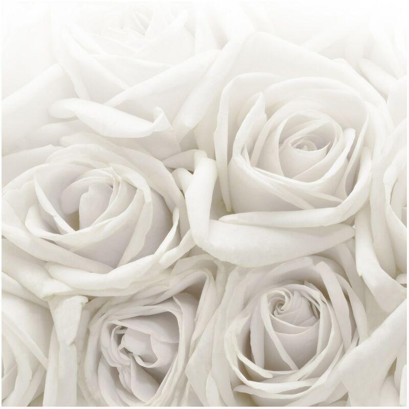 Papier peint intissé Roses blanches - Peinture murale Carré - Dimension HxL: 336cm x 336cm - 0-0 ...