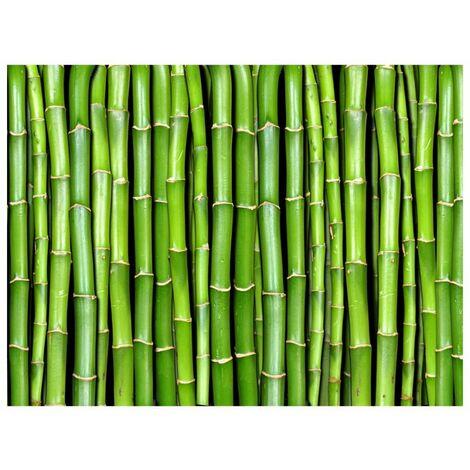 Papier peint - Mur vert bambou .Taille : 250x193