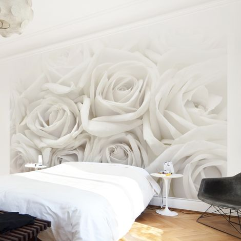 Papier peint photo adhésif Photo Wall Mural White Roses