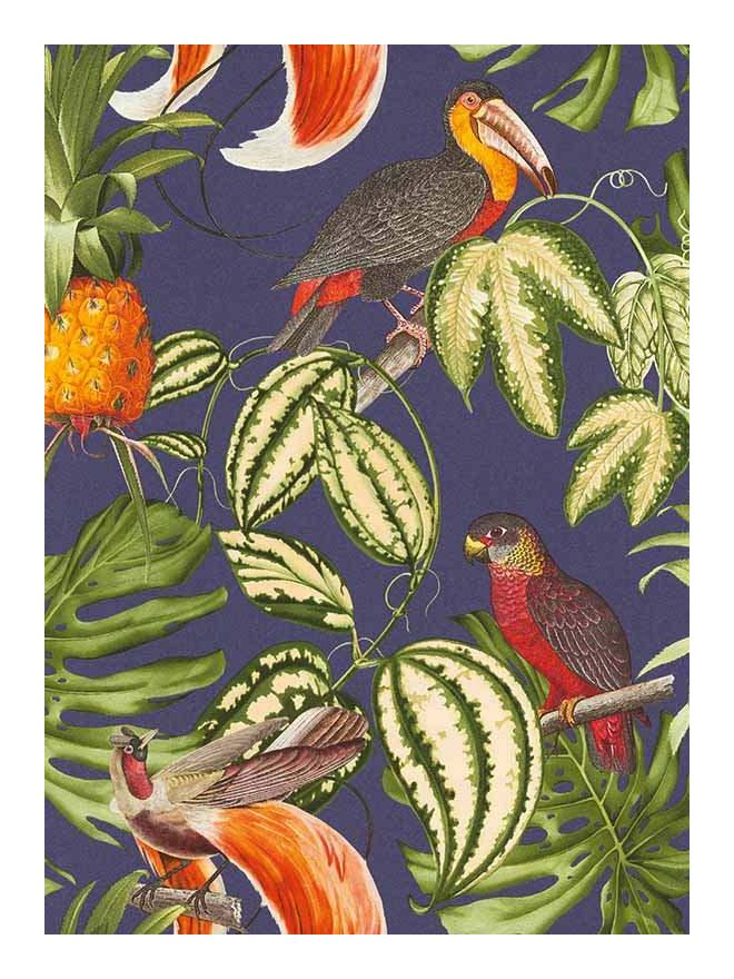 Image of Erismann Wallcoverings Ltd - Paradisio Wallpaper Parrot Toucan Tropical Exotic Trees Flower Vinyl Erismann