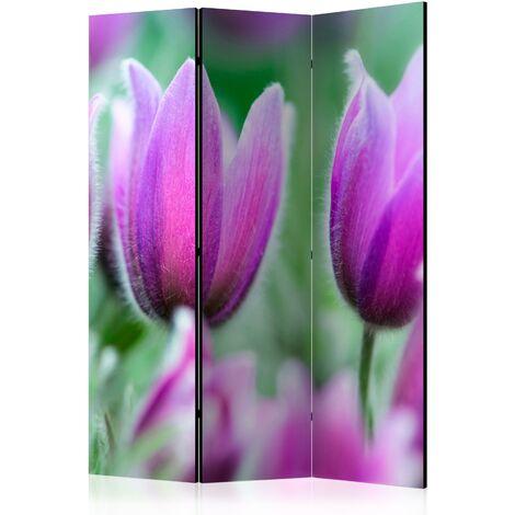Paravent 3 volets panneaux cloison séparateur de pièce pliable recto verso Tulipes de printemps violettes 135x172 cm - violete