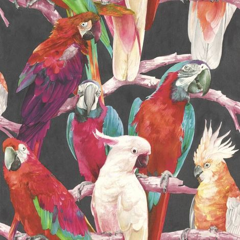Parrot Wallpaper Bird Animal Print Trees Feathers 2 Colours Available Rasch