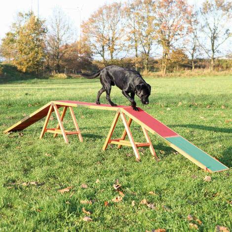Passerelle pour Agility. Dogwalk en bois pour chien.