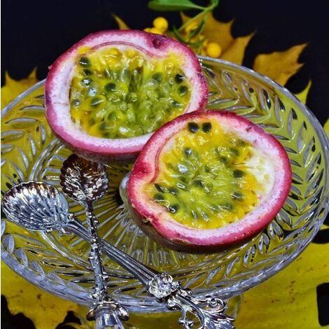 """main image of """"Passiflora edulis (Maracuja o Frutto della Passione) [H. 130-150 cm.]"""""""