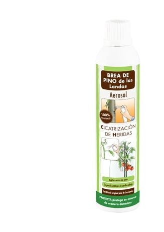 Pasta cicatrizante aerosol pino noruega 300 ml