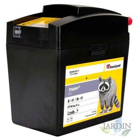 Pastor eléctrico 9V- 12V ideal para caballos