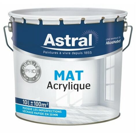 Peinture acrylique bicouche mat blanc base white 10L