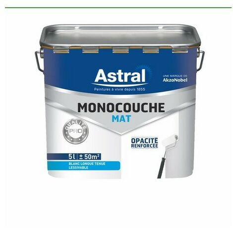 Peinture acrylique monocouche mate blanc base white 5L
