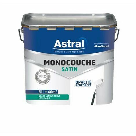 Peinture acrylique monocouche satinée blanc base white 5L