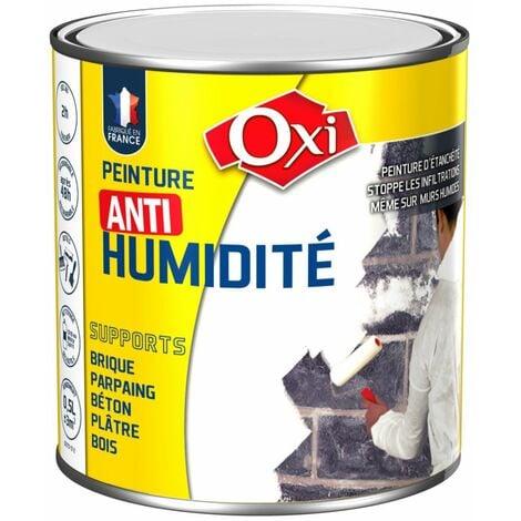 Peinture anti-humidité 0,5